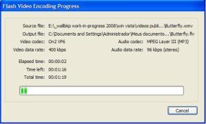 extraindo-video-flash6