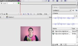 extraindo-video-flash7