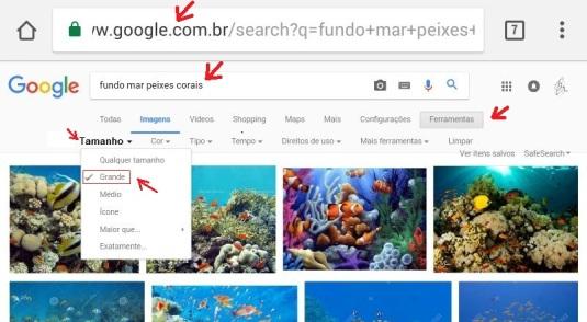 pesquisa-google-micro-mesa-1